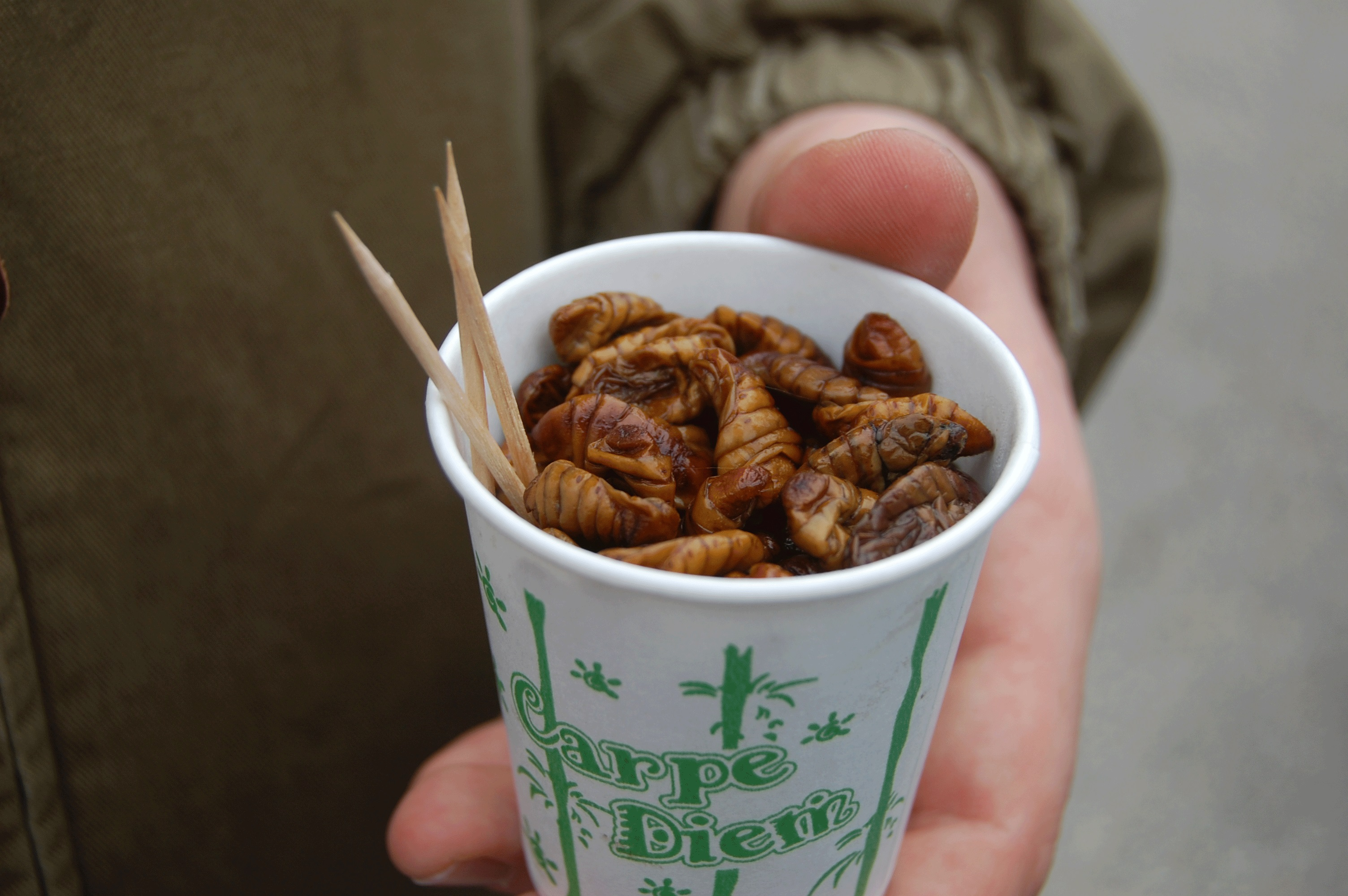 food review silkworm pupae the tattler